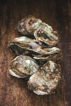 Fresh oysters on wooden background