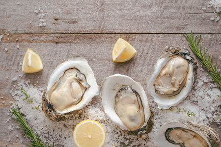 Dozen fresh oysters on a sea salt and lemon. Top view Stockfoto - 97766388