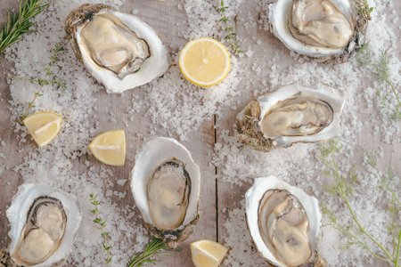 Dozen fresh oysters on a sea salt and lemon. Top view Stock Photo