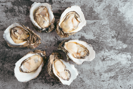 Opened Oysters on black metal rustic background