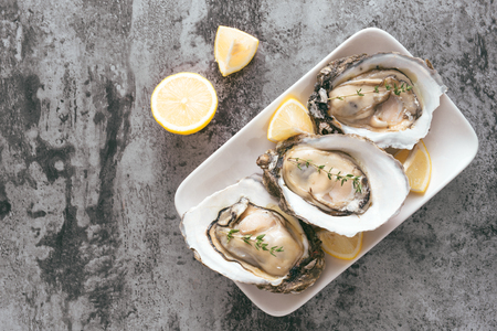 Fresh oysters in a white plate with ice and lemon on a wooden desk Imagens
