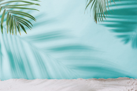 Summer concept. Palm tree shadow on a blue  background.
