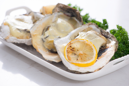 Fresh opened oysters on a white plate. Selective focus Stockfoto - 100061852