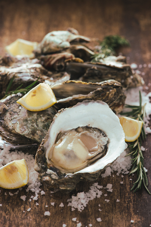 Open shell oyster with lemon and salt on a wooden board Stockfoto - 101746604