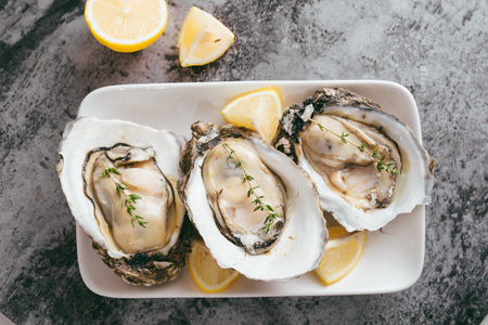 Opened oysters, lemon on gray stone table. Half dozen. With copy space
