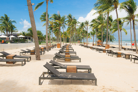 Beautiful nature tropical beach and sea with chair and coconut palm tree on paradise island for travel vacation