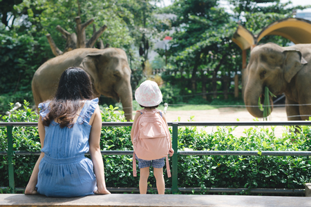 Gelukkig moeder en dochter kijken en voeden olifanten in dierentuin.