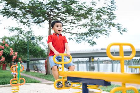 Happy little boy on seesaw outdoors