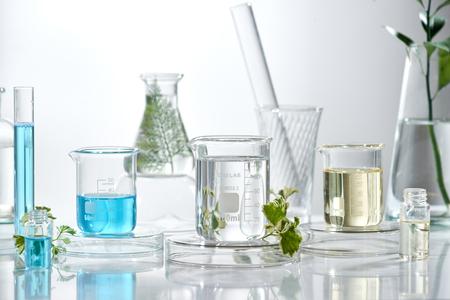Forschung und Entwicklung im kosmetischen Labor. Wissenschaft Bio Hautpflege Creme Serum Produkt mit Blättern. natürliches organisches Schönheitskosmetikkonzept. Kosmetologie. Standard-Bild
