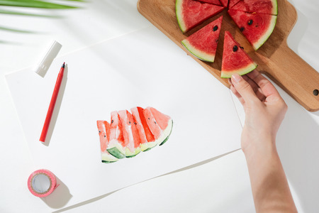 Tropical summer concept made of watermelon fruit and hand drawing illustration. Stock Photo