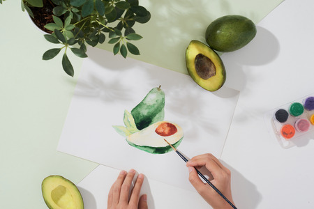 Tropical summer concept made of avocado fruit and hand drawing illustration. Banco de Imagens