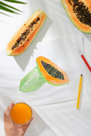 Tropical summer concept made of papaya fruit and hand drawing illustration. Stock Photo