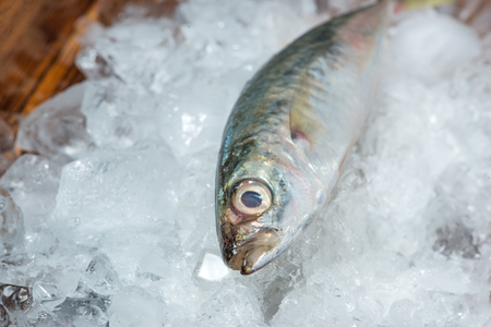 Fresh raw fish on ice on a wooden table. Imagens