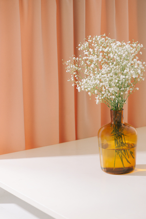 Gypsophila (Babys breath flowers), in glass bottle on textured background. Beautiful light, airy masses of small white flowers. floral still life as Interior decoration concept.