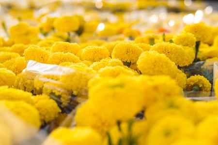 Marigold. Vietnam flower market in Tet holidayLunar new year