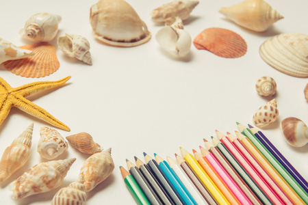 Seashells and starfish on a white background. Copy space for your text. Stock Photo