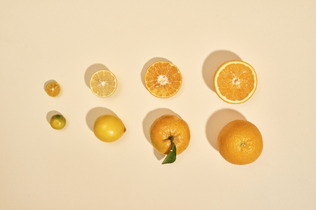 Citrus fruits are on a white background. Kumquat, lemon, mandarin, orange are on pastel background - Image