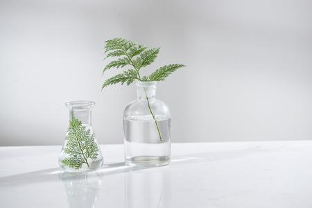 klares Wasser in Glaskolben und Fläschchen mit natürlichem grünem Blatt im Hintergrund des biotechnologischen Wissenschaftslabors