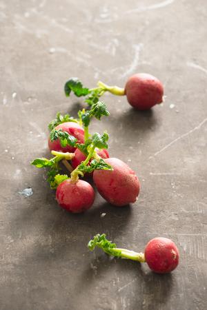 Summer harvest red radish. Growing organic vegetables. Raw fresh juicy garden radish on dark boards ready to eat. Stok Fotoğraf