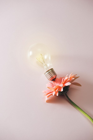 light bulb with beautiful flower around on pink background Stock Photo