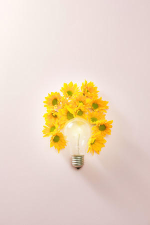 light bulbs to save energy with flowers around on pink background Stock Photo