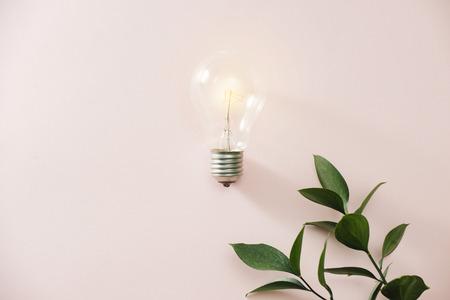 Light bulb with green leaves Standard-Bild - 123358915