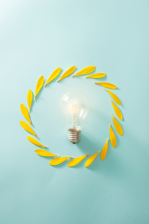Ecology and energy saving concept with eco bulb