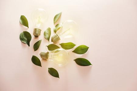 Eco green energy concept bulb, lightbulb leaves on pink background.