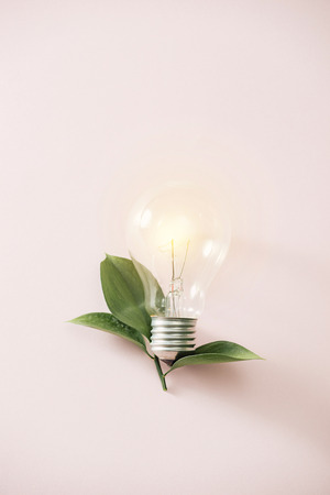 Eco green energy concept bulb, lightbulb leaves on pink background. Standard-Bild - 124343145