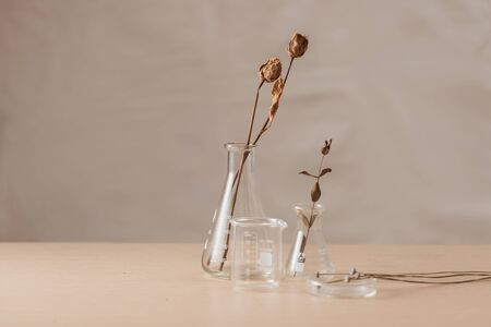 Glass flask with flowers on table in laboratory