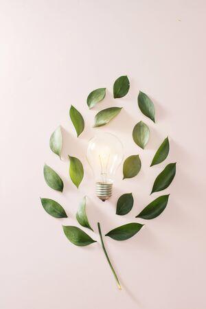 Lampadina di concetto di energia verde di eco, foglie di lampadina su sfondo rosa.