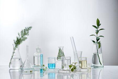 investigación y desarrollo en laboratorio cosmético. Science bio crema para el cuidado de la piel producto en suero con hojas. Concepto de cosmética de belleza orgánica natural. cosmetología. Foto de archivo