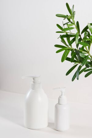 Bottles of shampoo and tropical leaf on color background