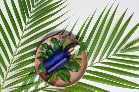Blue serum bottle on wood plate with green leaves on white background. Spa and beauty concept.