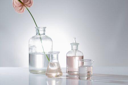 Schöne Komposition mit Parfümproben und Blumen auf dem Tisch Standard-Bild