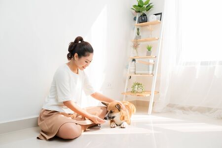 Young Asian woman playing with her dog at home 스톡 콘텐츠