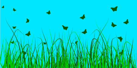 vector illustration of several butterflies over a field of grass