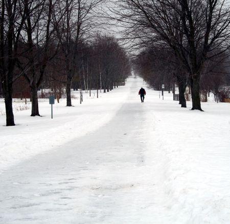 solitario persona caminando sobre un camino cubierto de nieve en un parque  Foto de archivo - 2597483