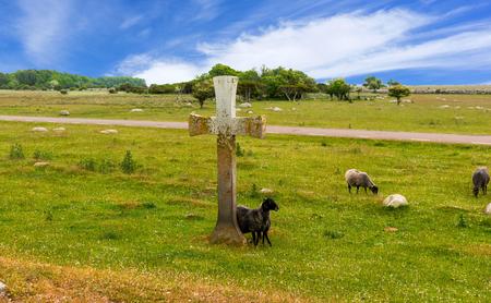 Ancient cross at the swedish island Oland Stock Photo