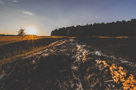 a big rock in front of fields and forest during the sunset