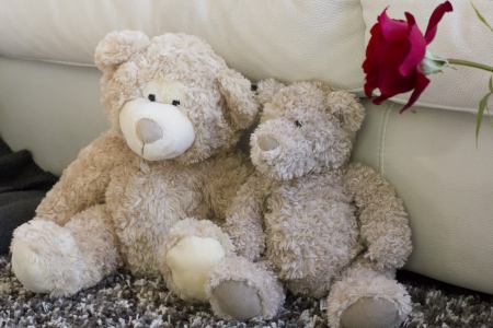 Couple of teddy bear relationship in love  photo