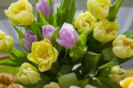 Colorful tulips bouquet photo