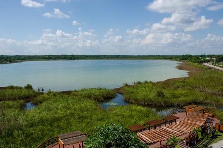Lagoon of Coba, Mxico 版權商用圖片