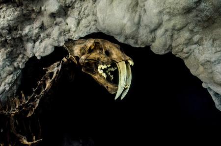 prehistoric animal of the ice age