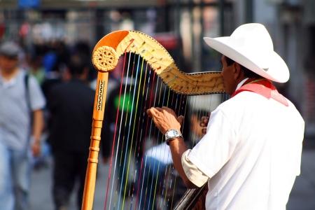 ベラクルス メキシコシティの観光客のための再生から伝統的な jarocho ミュージシャン
