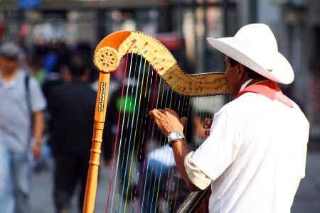 Traditional jarocho musician from Veracruz playing for tourists in Mexico City