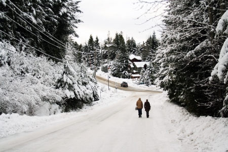 Man and woman walk in a winter snow scene Stock Photo - 17767934