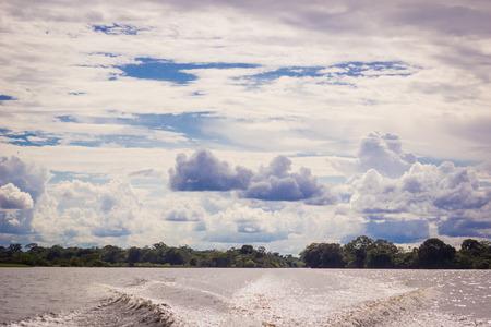 rio amazonas: R�o de la selva amaz�nica Foto de archivo