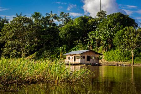 rio amazonas: Amazon casa selva r�o