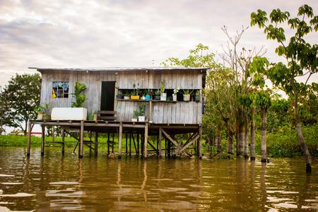 아마존 강가에있는 집